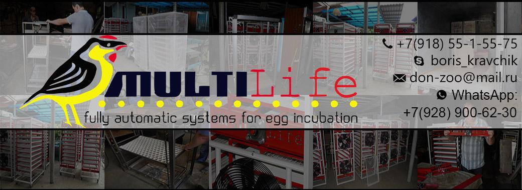 Автоматические инкубаторы Multilife